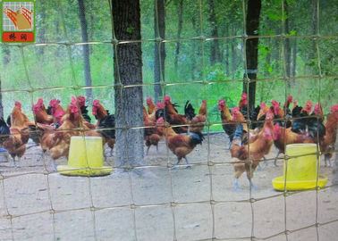 2M High Poultry Fence Netting, Plastic Poultry Netting, Transparent Color, PP Material, Square Hole